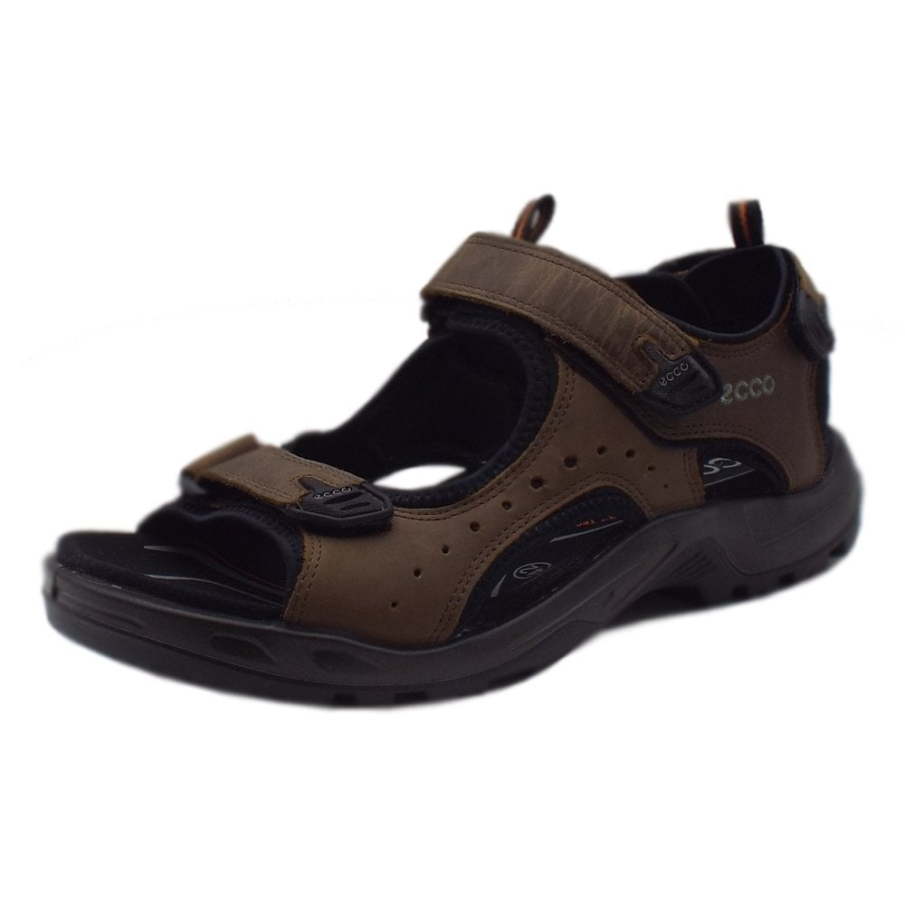 new season new products special selection of 822044 Offroad Men's Trekking Sandals in Brown