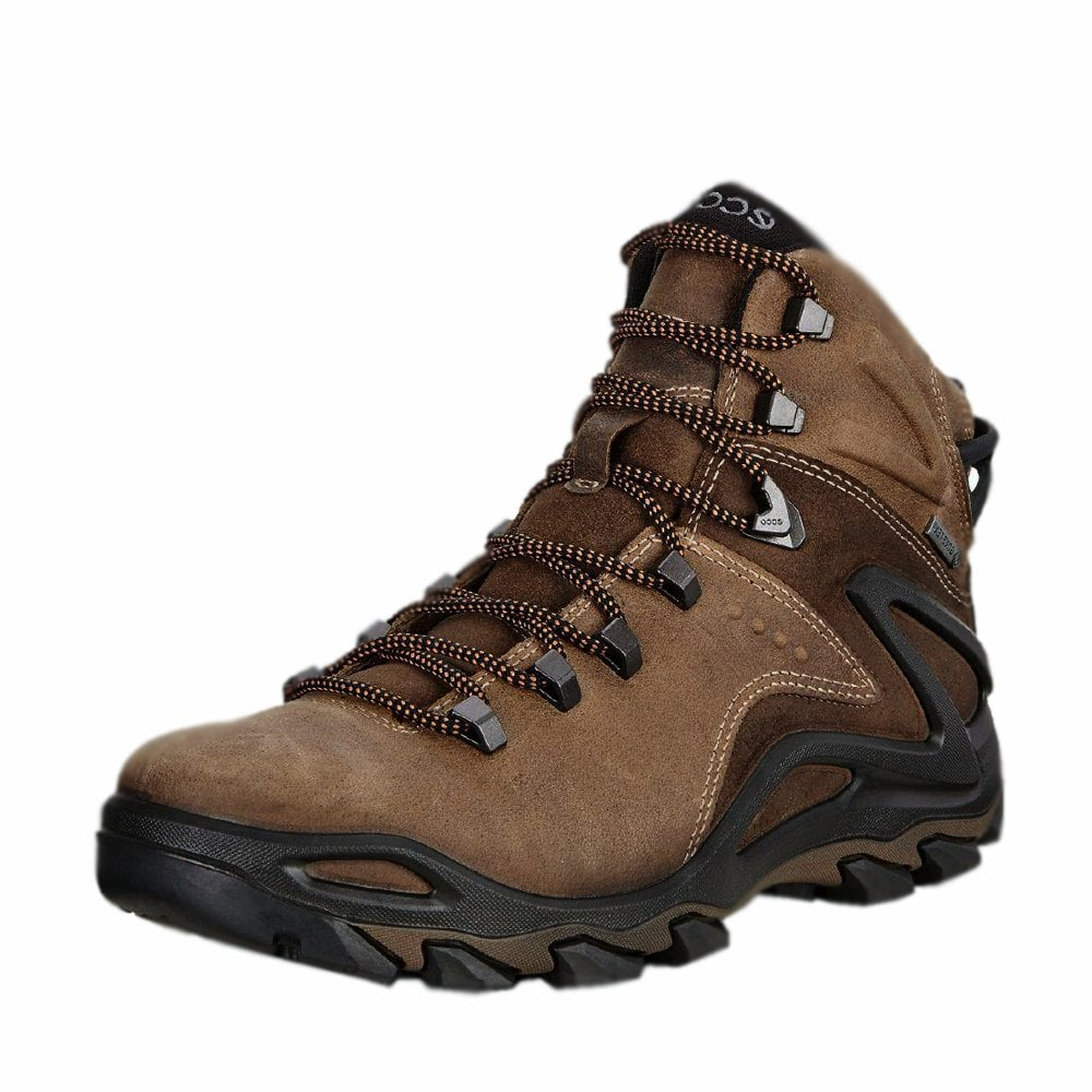 Winter Gore-Tex Hiking Boots in Brown
