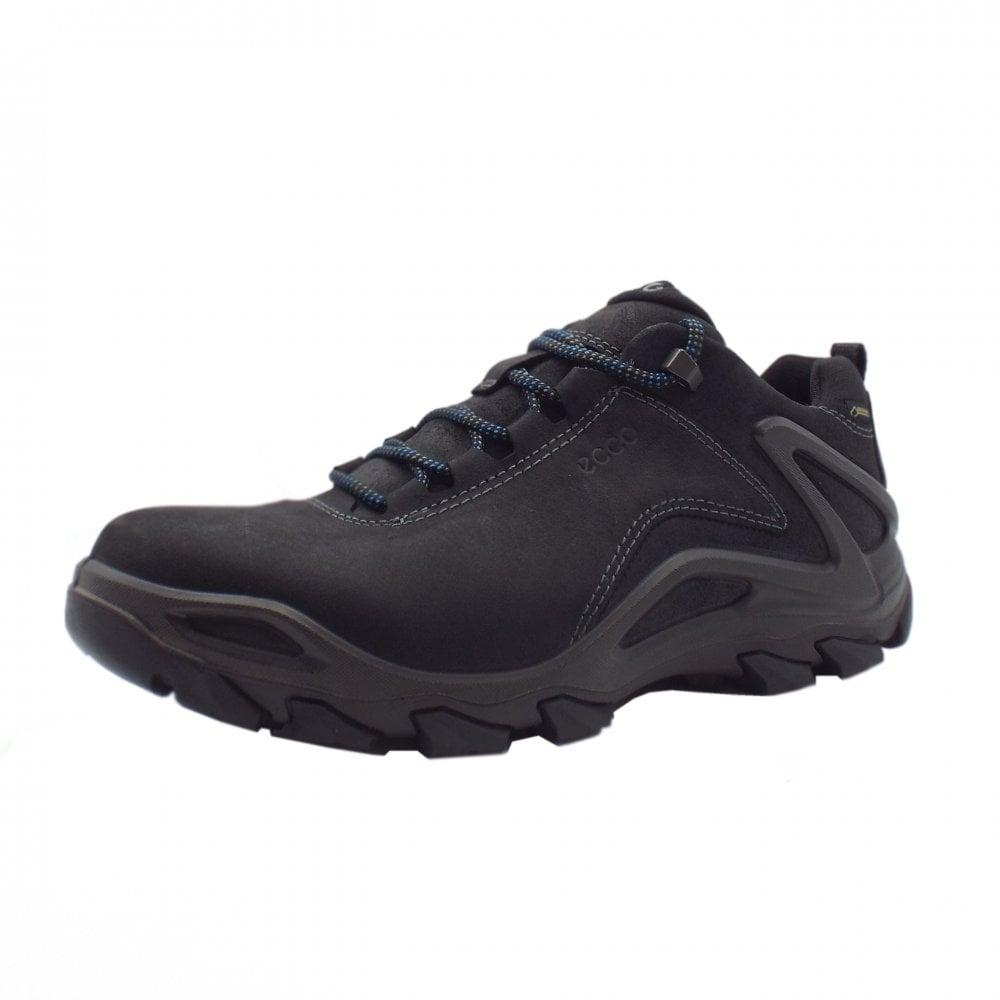 939d7217f481 826524 Terra Evo Men  039 s Lace-up Gore-Tex Hiking Boot