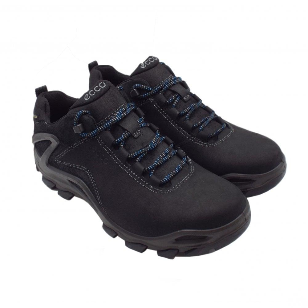 0534ecdba6 ECCO 826524 Terra Evo Men's Lace-up Gore-Tex Hiking Boot in Black