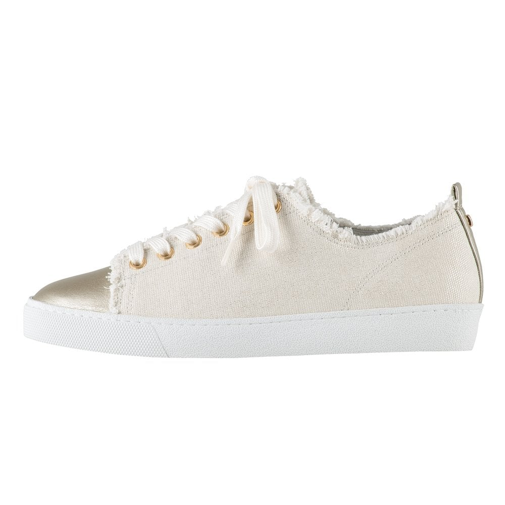 new concept bb012 8d7eb 7-10 0358 Cotton Club Lace Up Canvas Sneakers in Cotton