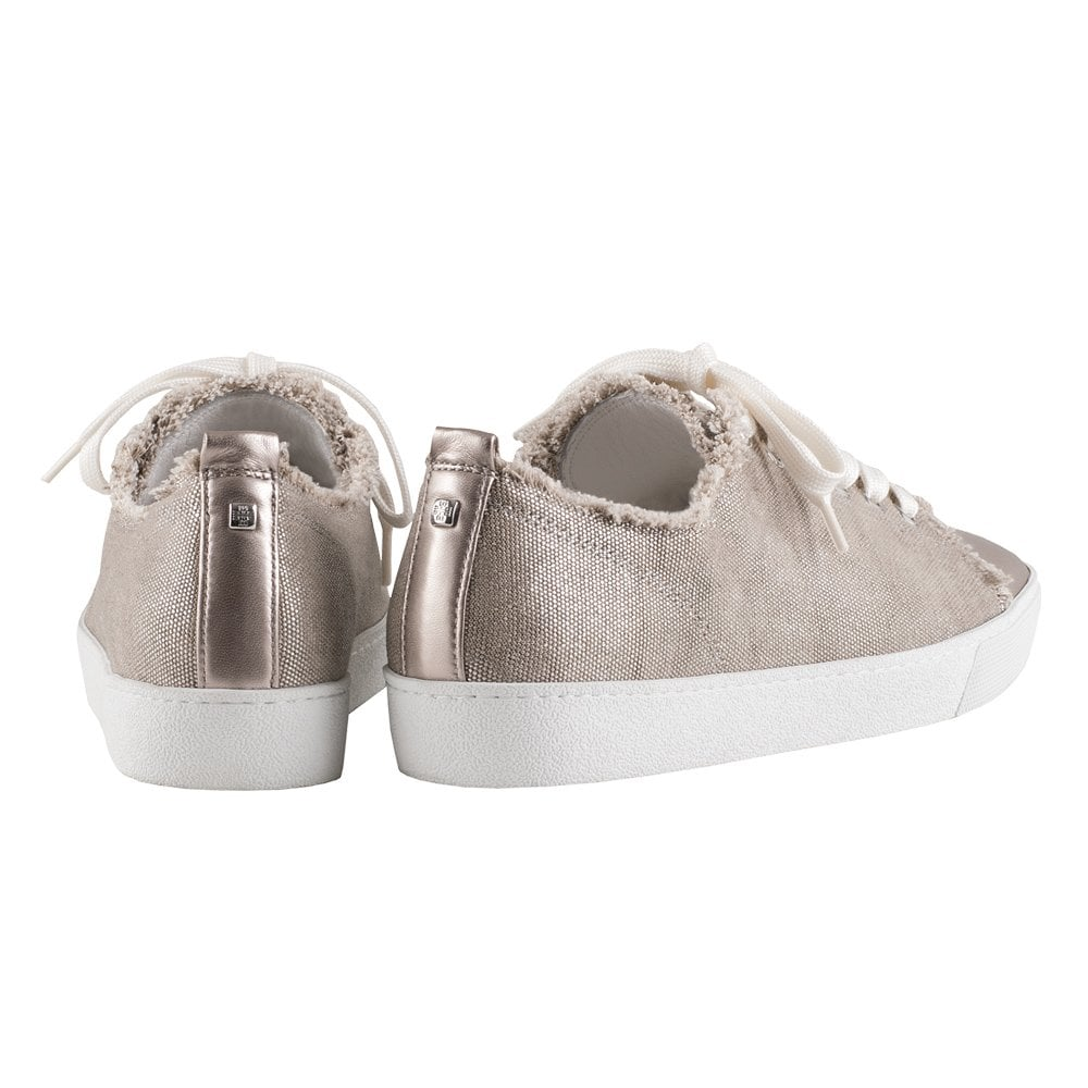 Taupe Club 0358 In 7 Sneakers 10 Cotton Canvas Lace Up 6vIgYf7yb